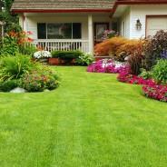 Landscaping in Ashburn, VA: Basic Hardscape Design Tips for your Home